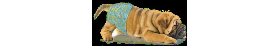 Гигиена и пеленки для собак