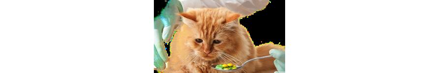 Средства от глистов для кошек
