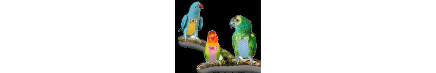 Для птиц